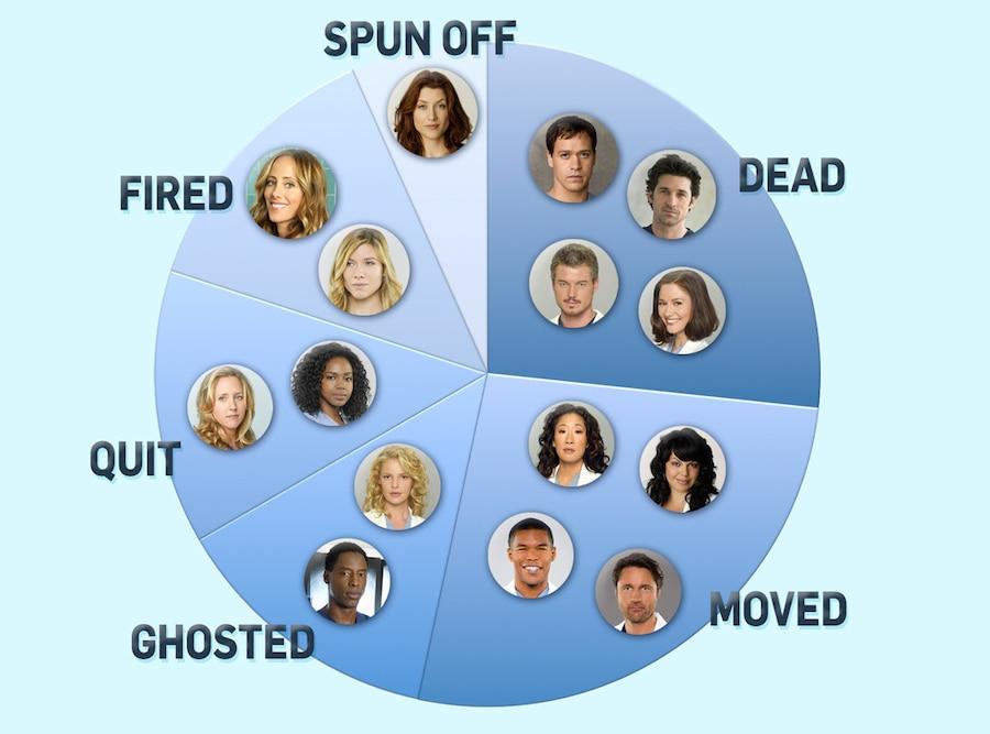 Grey's Anatomy Exits, Pie Chart