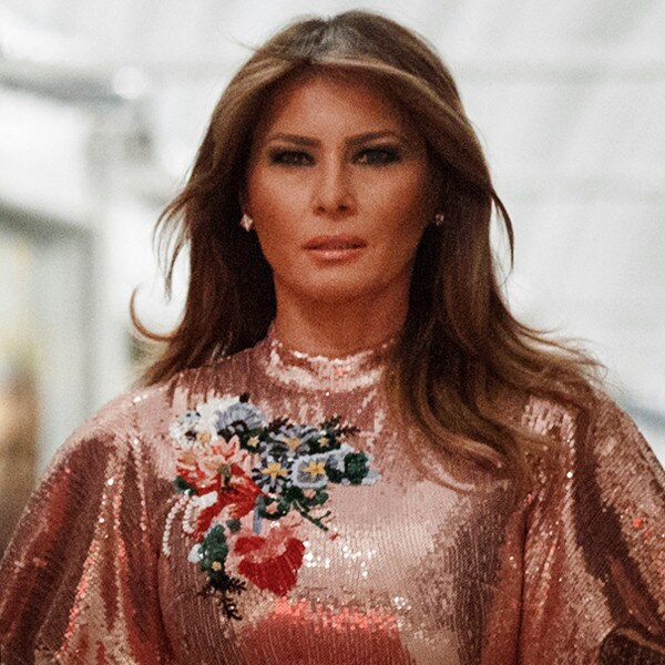 Melania makes first look since Stormy's intercourse claims