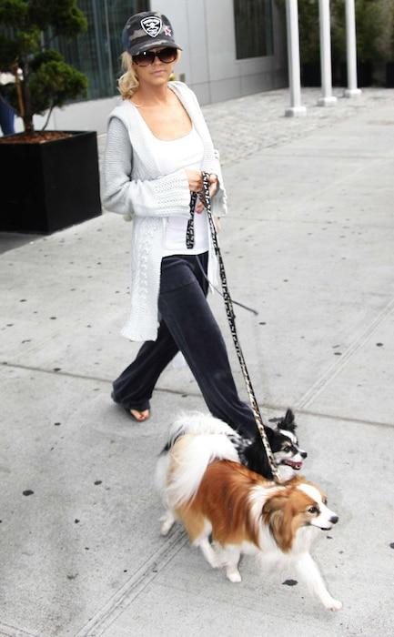 Christina Aguilera, Dogs