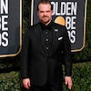 <i>Stranger Things</i>' David Harbour Agrees to Officiate a Fan's Wedding