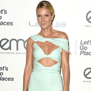 Gwyneth Paltrow, Environmental Media Awards