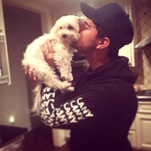Taylor Lautner, Instagram, Dog