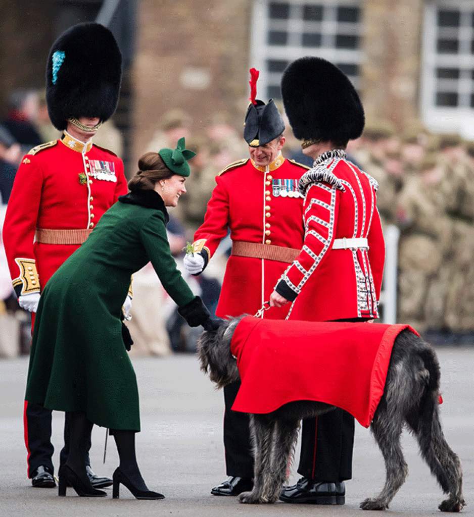 Kate Middleton, St. Patrick's Day Parade, Dog