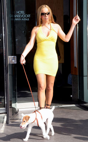 Mariah Carey spotted walking her dog outside the Gansevoort Hotel in NYC