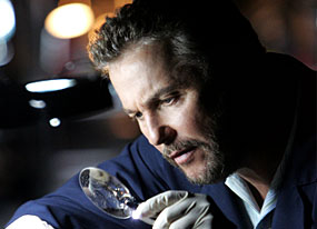 William Petersen, CSI