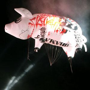 Roger Waters' Pig