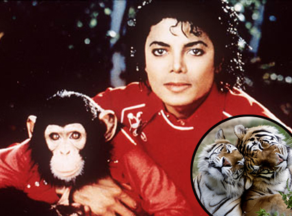 Michael Jackson, Bubbles, Tigers