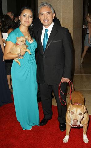Dog Whisperer Cesar Millan Loses Grip On Marriage E Online