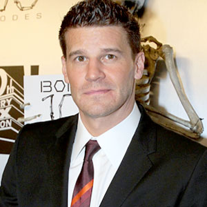 david-boreanaz-sex-tape-knock-knock-who-s-there-go-fuck-yourself