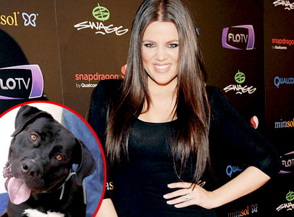 Khloe Kardashian Odom, Fred the Dog