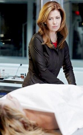 Body Of Proof, Dana Delany