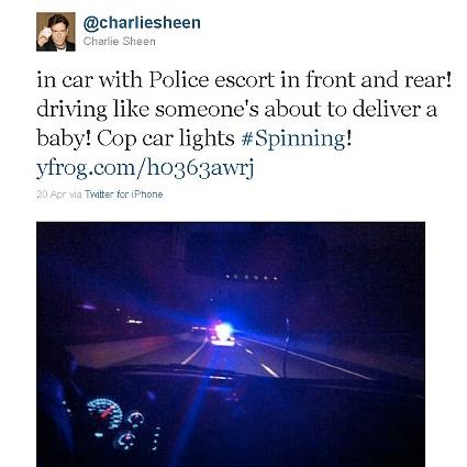 Charlie Sheen, Twitter