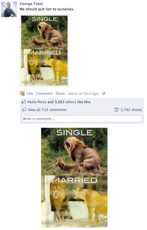 Soup Facebook Lions X3