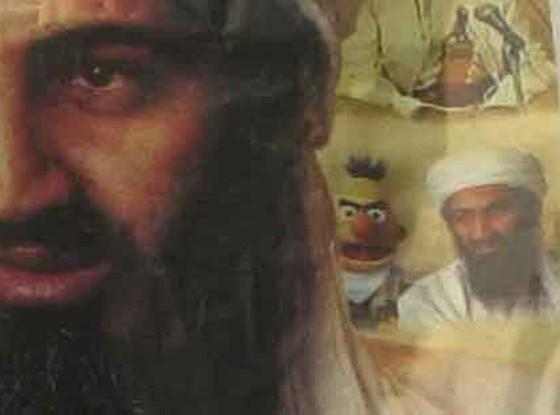 Bert, Bin Laden