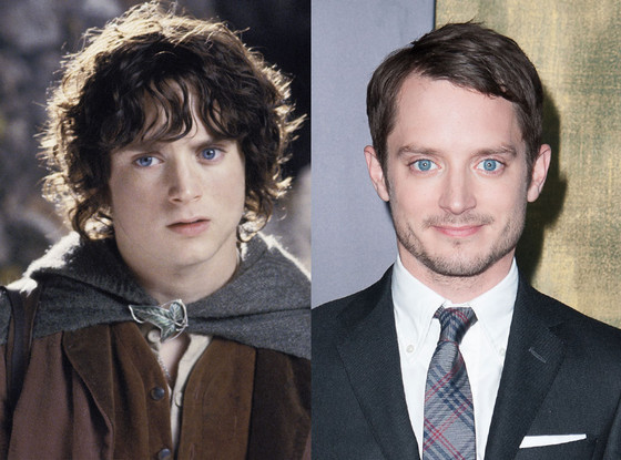 Elijah Wood, Lord of the Rings