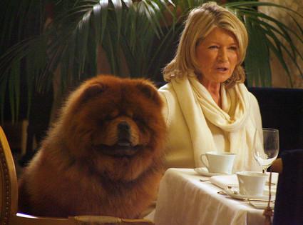 Martha Stewart, Genghis Khan