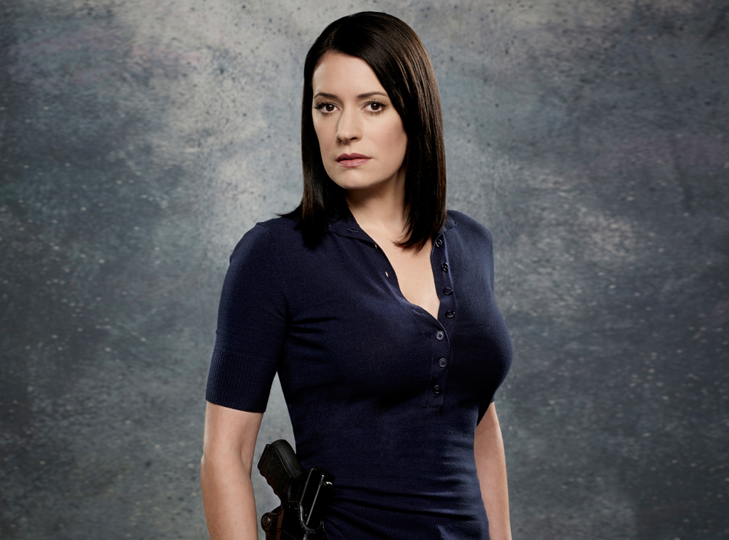Paget Brewster Bio, Age, Height, Family, Husband, Criminal