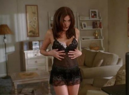 Teri Hatcher, Desperate Housewives