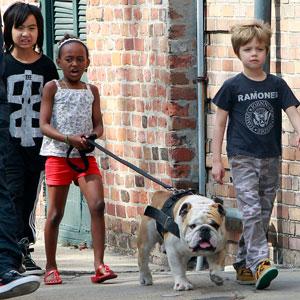 Zahara Jolie-Pitt, Maddox Jolie-Pitt, Shiloh Jolie-Pitt