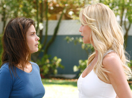 Terri Hatcher, Nicollette Sheridan, Desperate Housewives