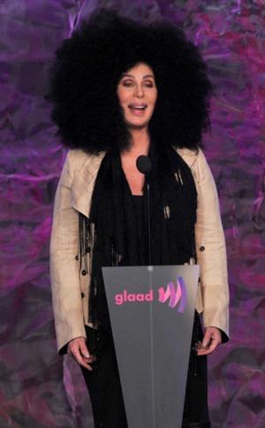 GLAAD Awards, Cher