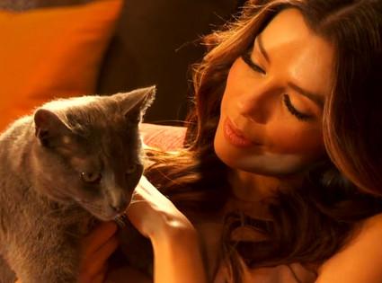 Eva Longoria, Sheba Cat Commercial