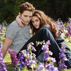 Twilight Saga Breaking Dawn Part 2