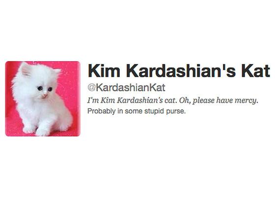 Kim Kardashian's Kat, Mercy, Twitter
