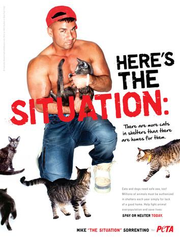 Mike The Situation Sorrentino, PETA
