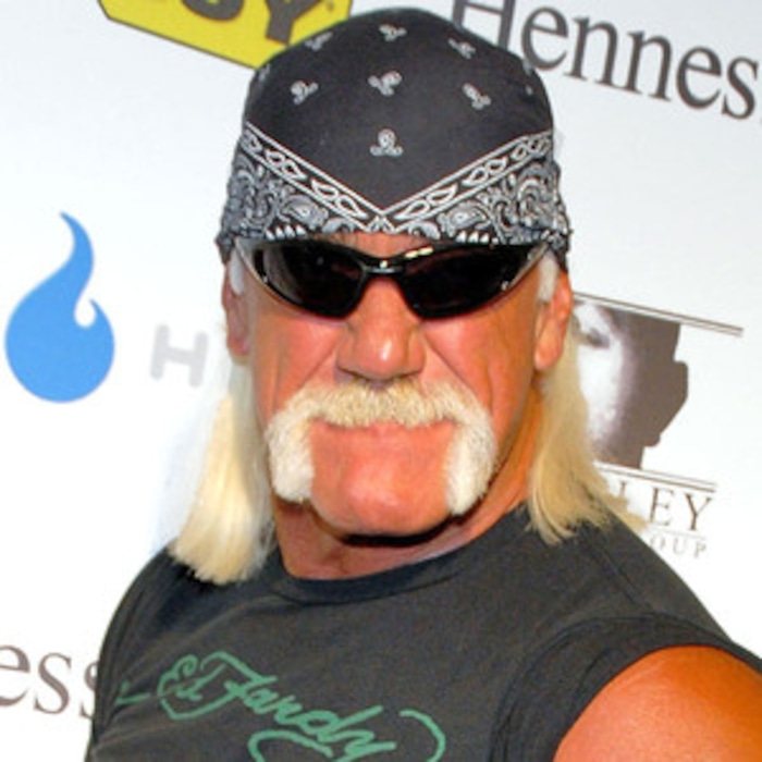 Hulk Hogan Opening Tampa Breastaurant It Will Be Hooters Times 10