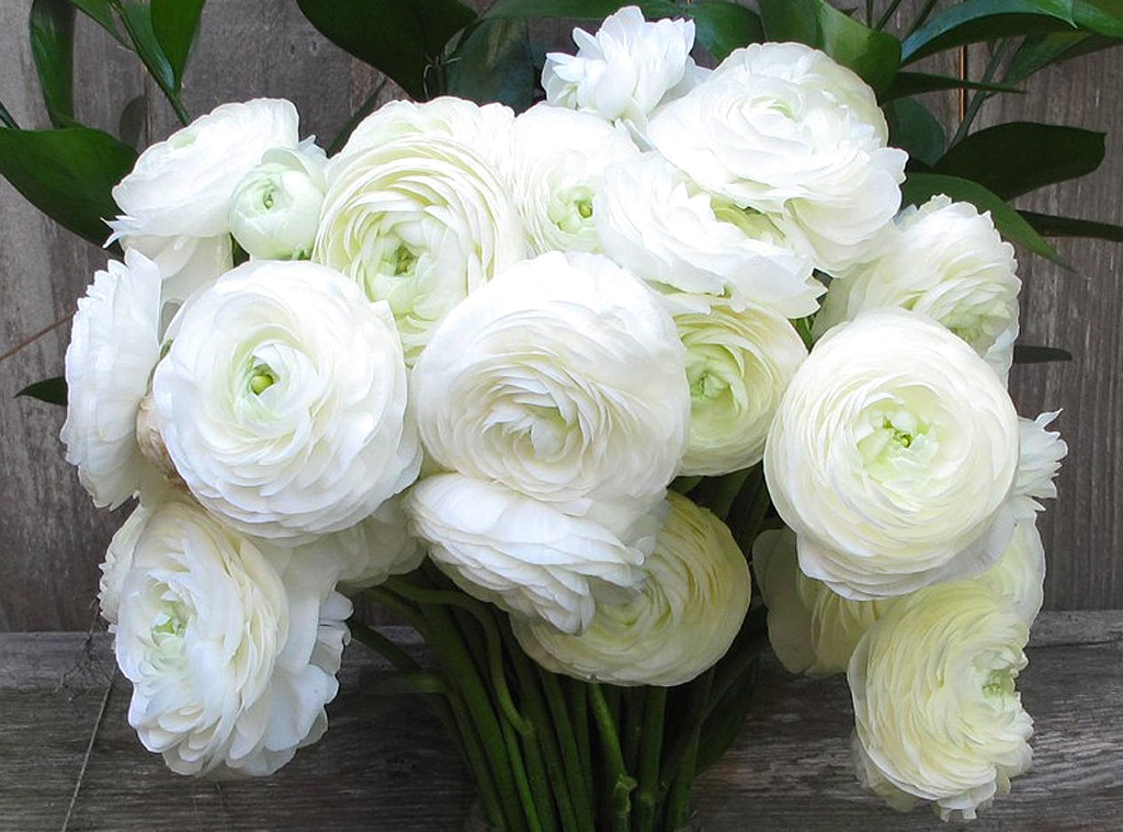 Lauren Conrad Gift Guide, Flower Bouquet