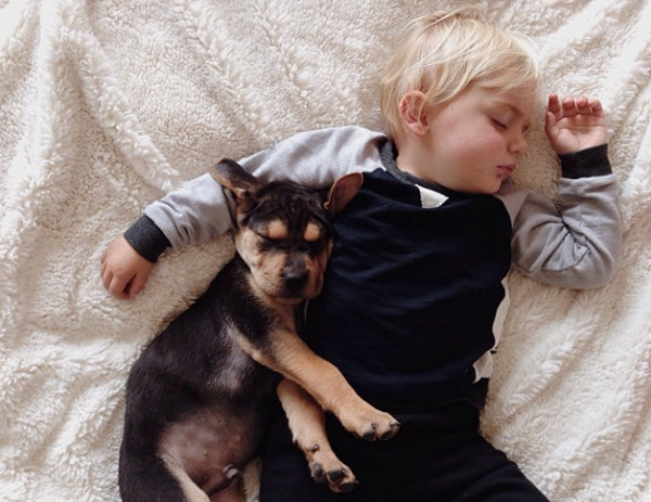 Theo and Beau, puppy and baby, Momma's Gone City