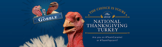 National Thanksgiving Turkey, Obama