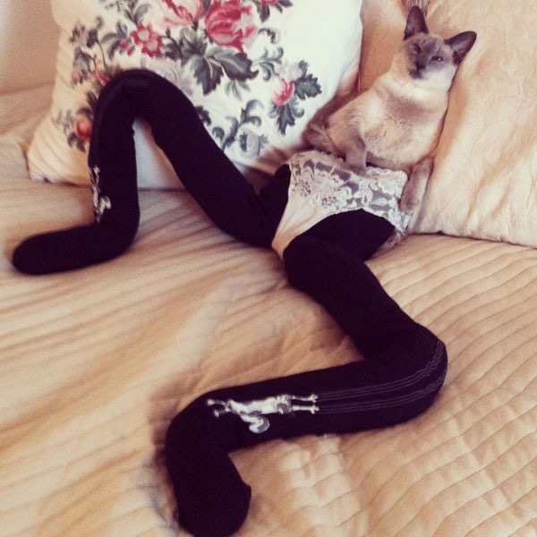 Cats Wearing Tights Is Your New Favorite Thing - E! Online