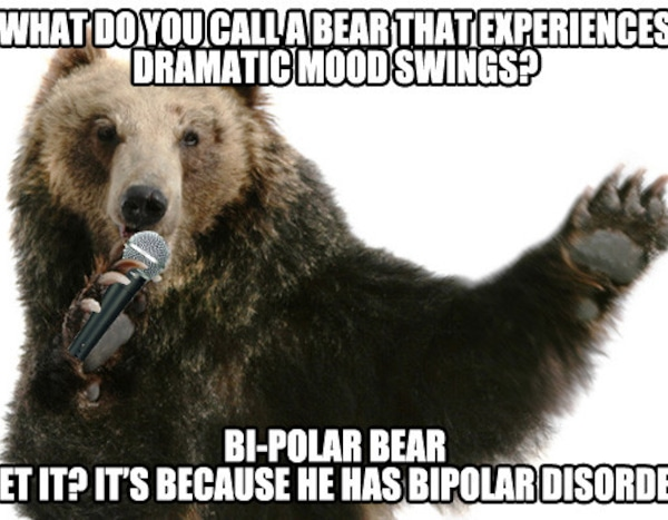 Polar Bear from No One Told Us NOT To Make a Bear Comedian ...
