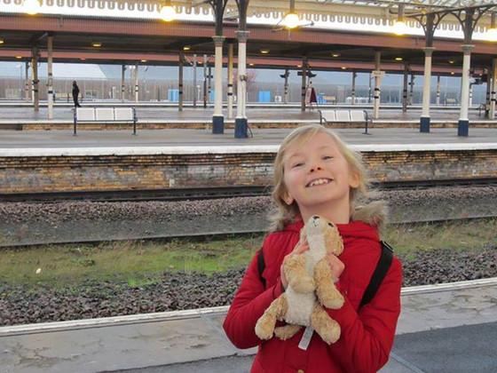 Phoebe Simpson, Stuffed Lion