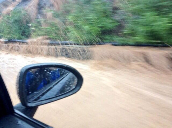 Ron Howard, Flood Twit Pic