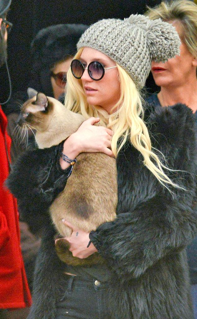 Kesha, Cat