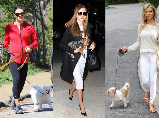 Miranda Kerr, Jenna Dewan Tatums, Joanna Krupa, Dog