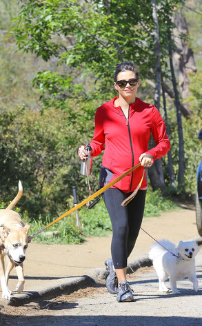 Jenna Dewan Tatum, dog