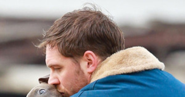 Tom Hardy Kisses Cuddles With Adorable Pit Bull Puppy See