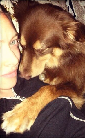 Amanda Seyfried, Dog, Twit Pic