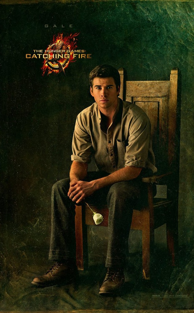 Hunger Games Poster, Gale, Gallery