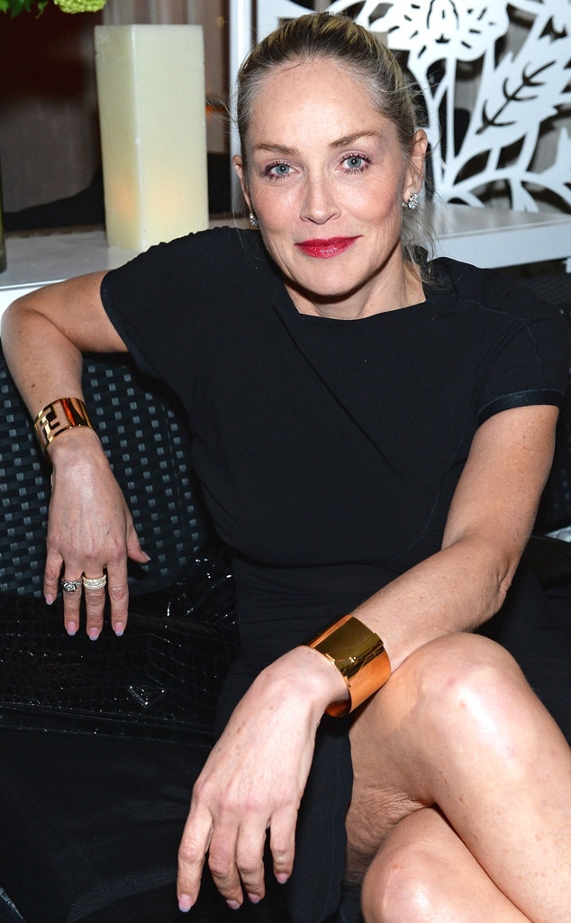 Sharon Stone, The New Yorker's David Remnick Hosts White House Correspondents' Dinner Weekend Pre-Party
