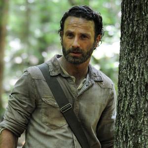 The Walking Dead, Season 4