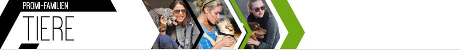 Celeb Families_Pets Category Header with pics - DE