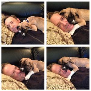 Kevin Spacey Twitter, Dog Boston