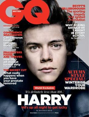 Harry admite que es bisexual