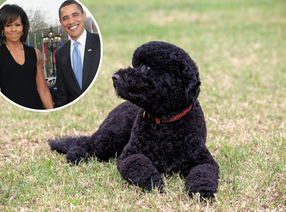 Sunny, Michelle Obama, Barack Obama