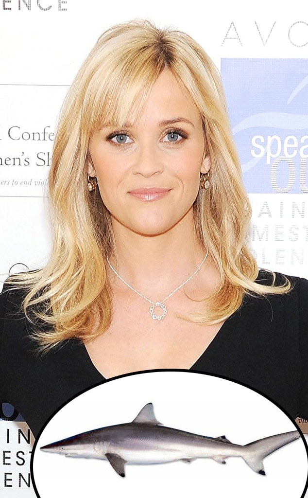Reese Witherspoon, Spinner Shark